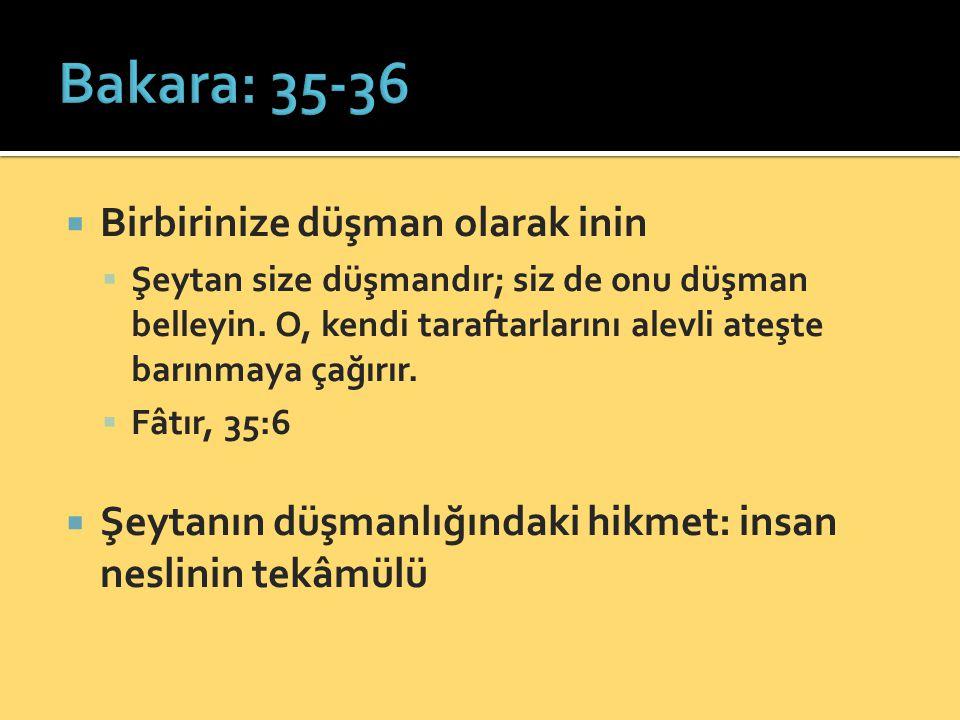 Bakara: 35-36 Birbirinize düşman olarak inin