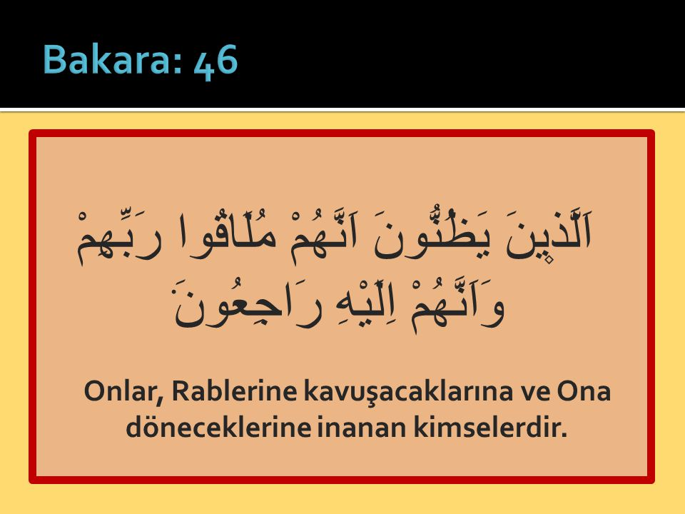 Bakara: 46 اَلَّذ۪ينَ يَظُنُّونَ اَنَّهُمْ مُلَاقُوا رَبِّهِمْ وَاَنَّهُمْ اِلَيْهِ رَاجِعُونَ۟
