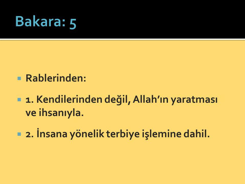 Bakara: 5 Rablerinden: 1. Kendilerinden değil, Allah'ın yaratması ve ihsanıyla.