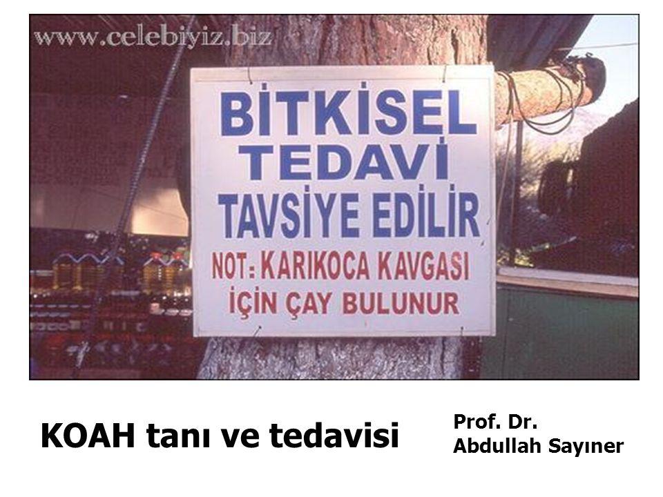 Prof. Dr. Abdullah Sayıner KOAH tanı ve tedavisi