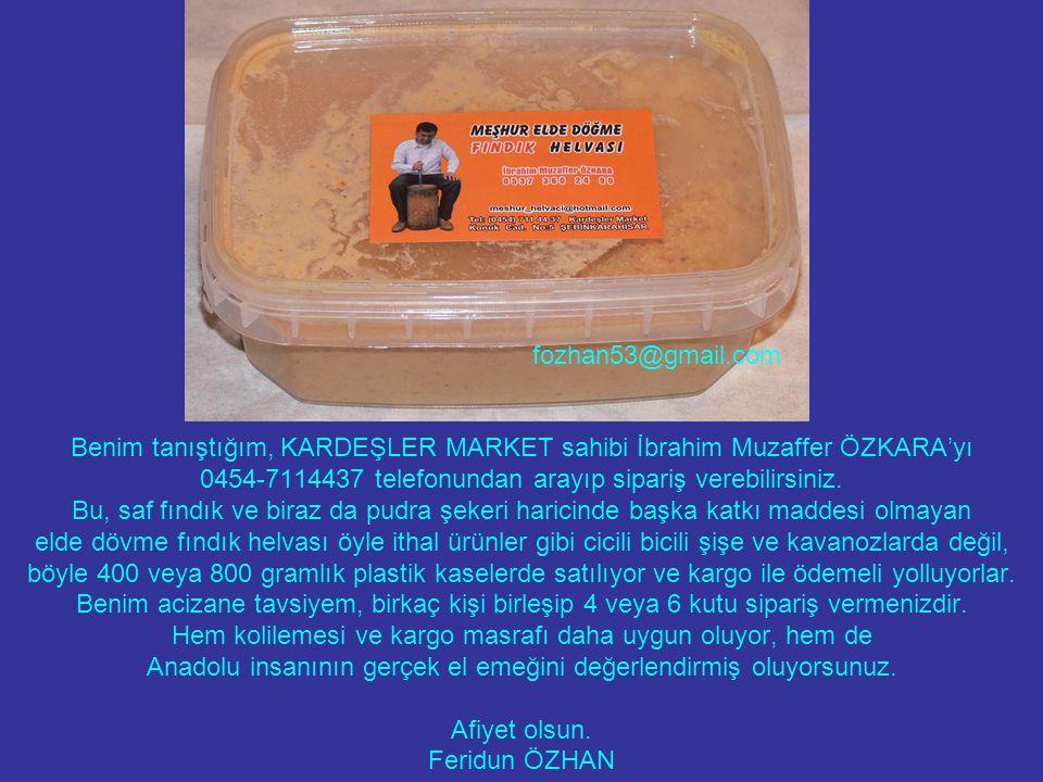 fozhan53@gmail.com