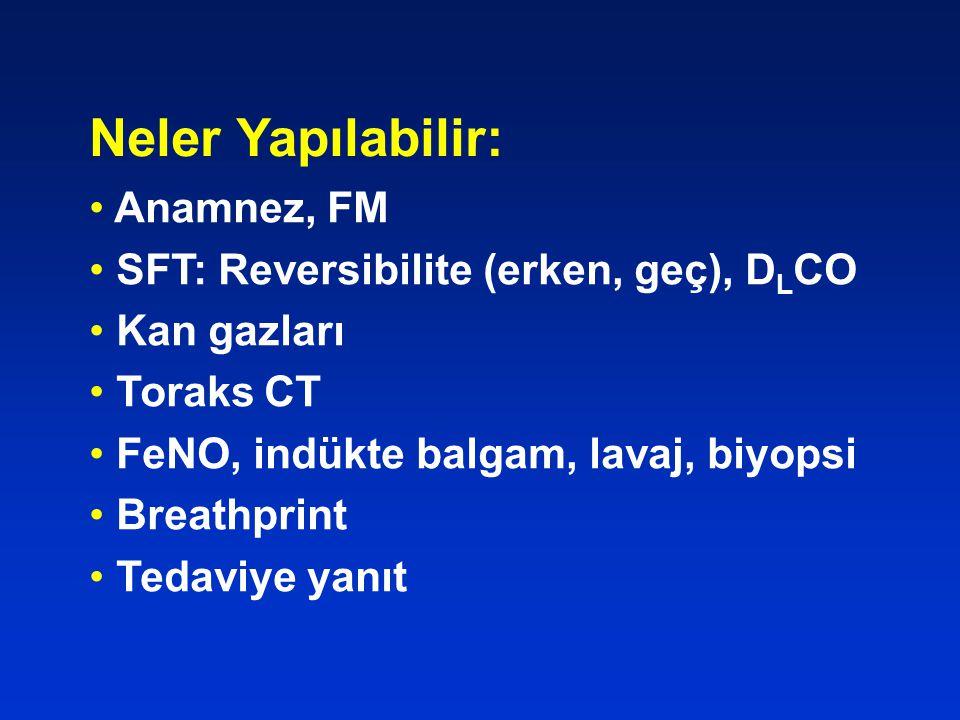 Neler Yapılabilir: Anamnez, FM SFT: Reversibilite (erken, geç), DLCO