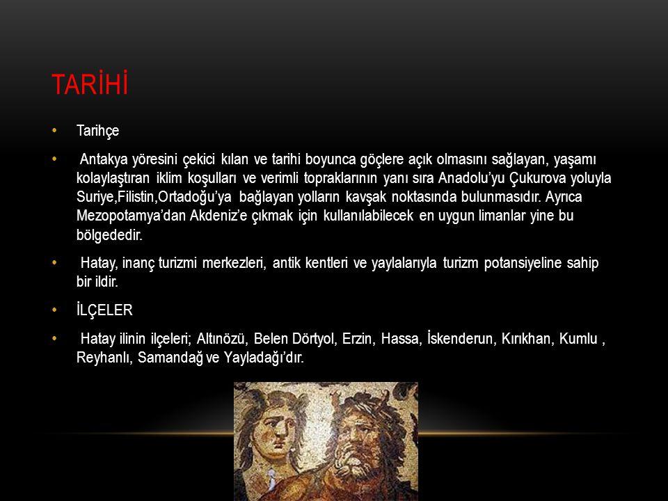 TARİHİ Tarihçe.
