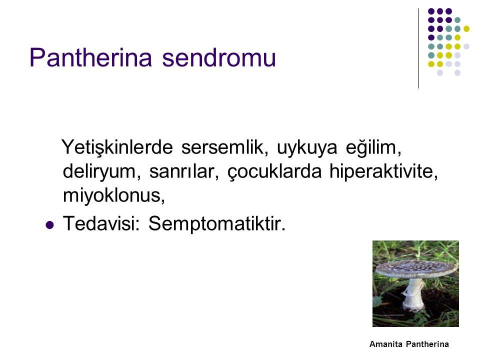 Pantherina sendromu Yetişkinlerde sersemlik, uykuya eğilim, deliryum, sanrılar, çocuklarda hiperaktivite, miyoklonus,