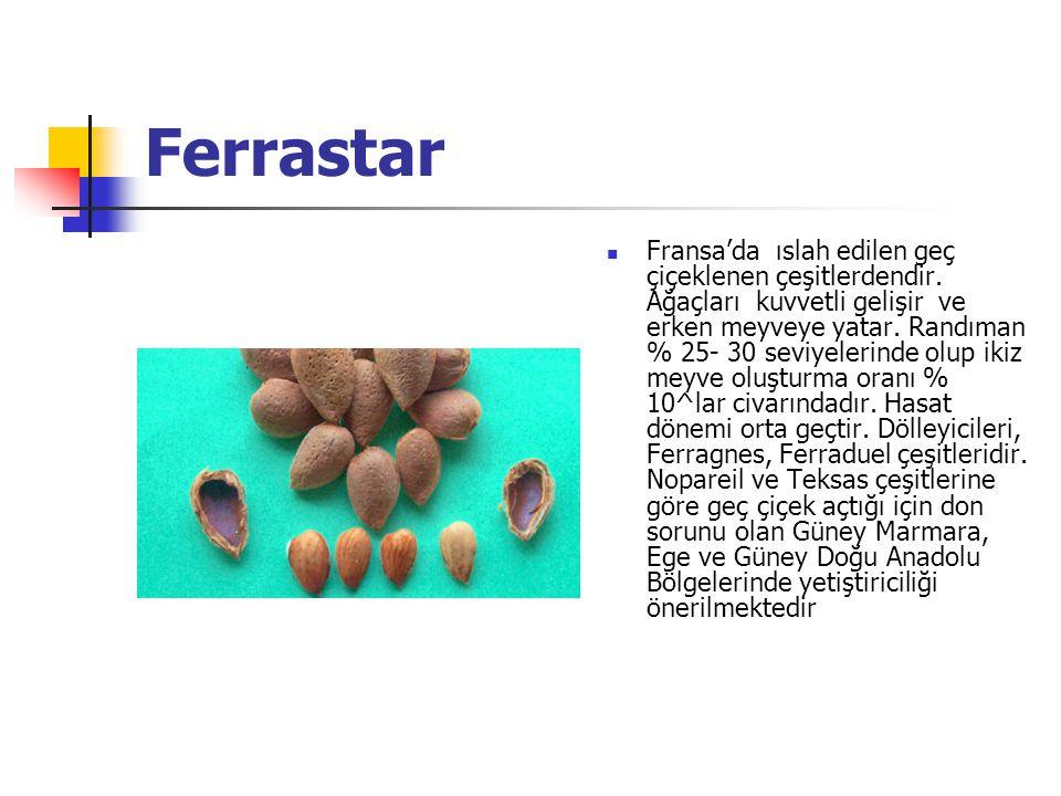 Ferrastar