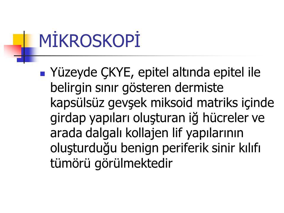 MİKROSKOPİ