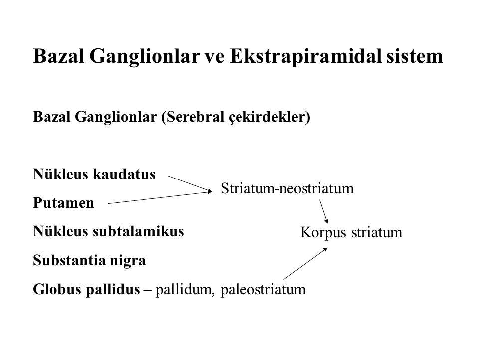 Bazal Ganglionlar ve Ekstrapiramidal sistem