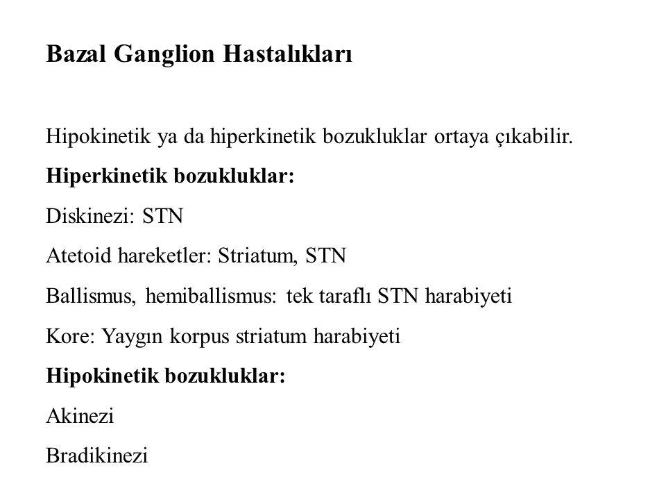 Bazal Ganglion Hastalıkları