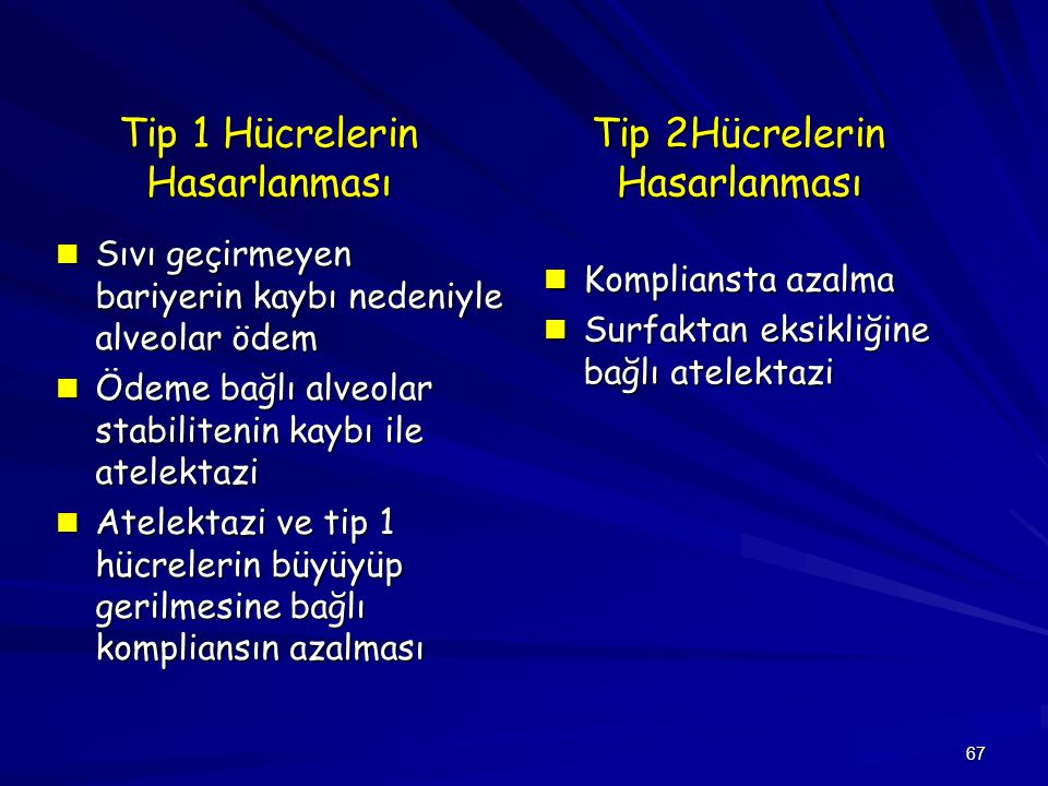 Tip 1 Hücrelerin Hasarlanması