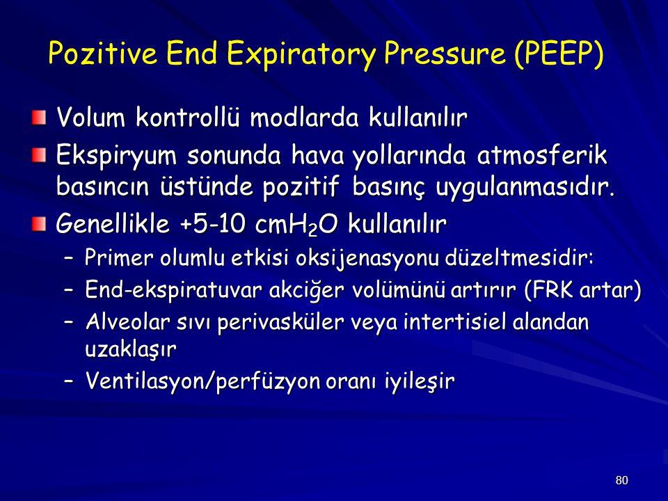 Pozitive End Expiratory Pressure (PEEP)