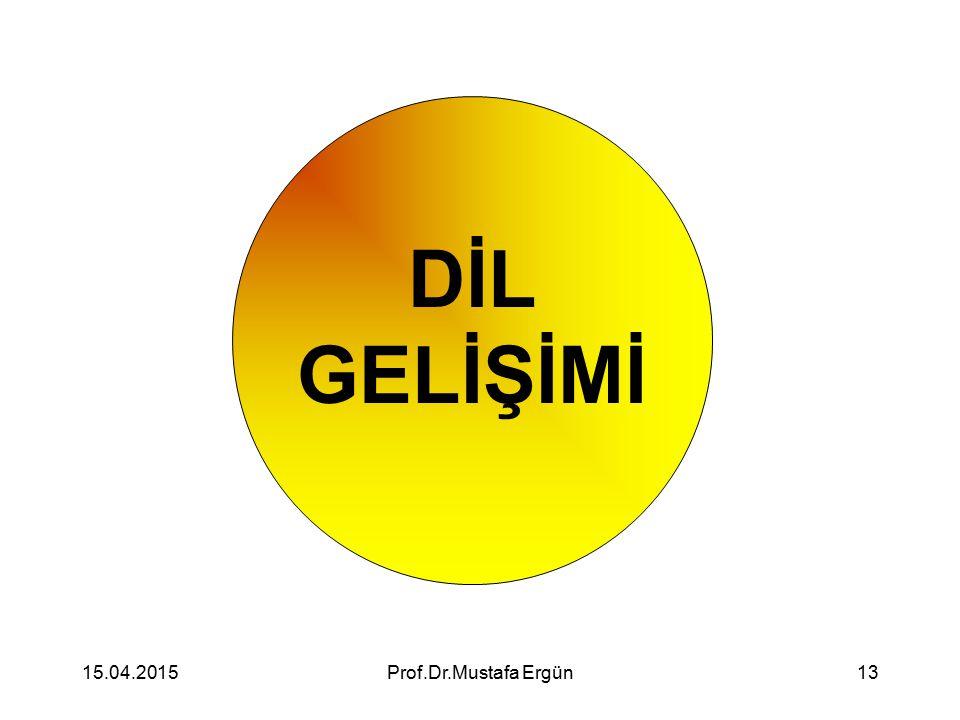 DİL GELİŞİMİ 12.04.2017 Prof.Dr.Mustafa Ergün