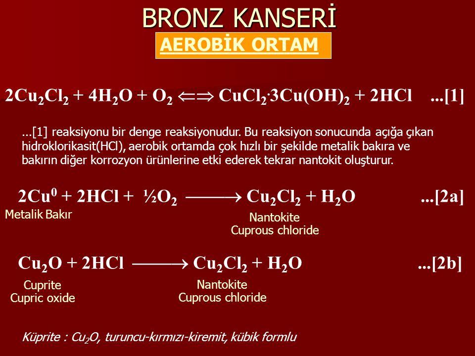 BRONZ KANSERİ AEROBİK ORTAM