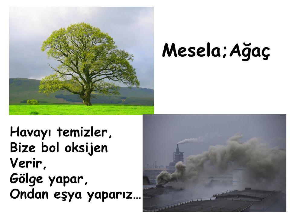 Mesela;Ağaç Havayı temizler, Bize bol oksijen Verir, Gölge yapar,