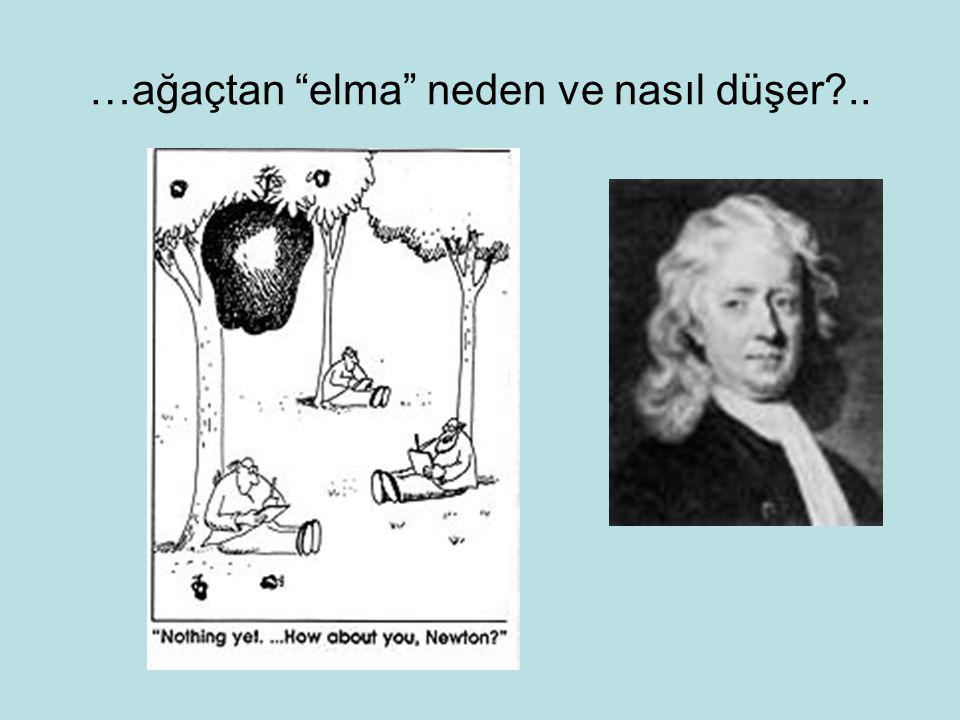 …ağaçtan elma neden ve nasıl düşer ..