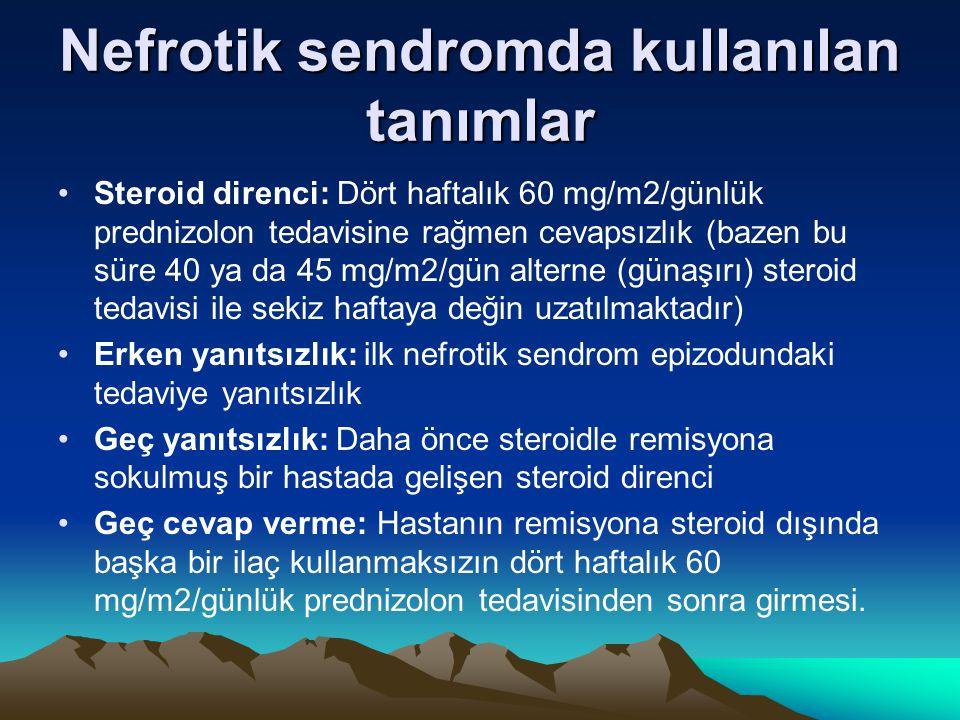Nefrotik sendromda kullanılan tanımlar