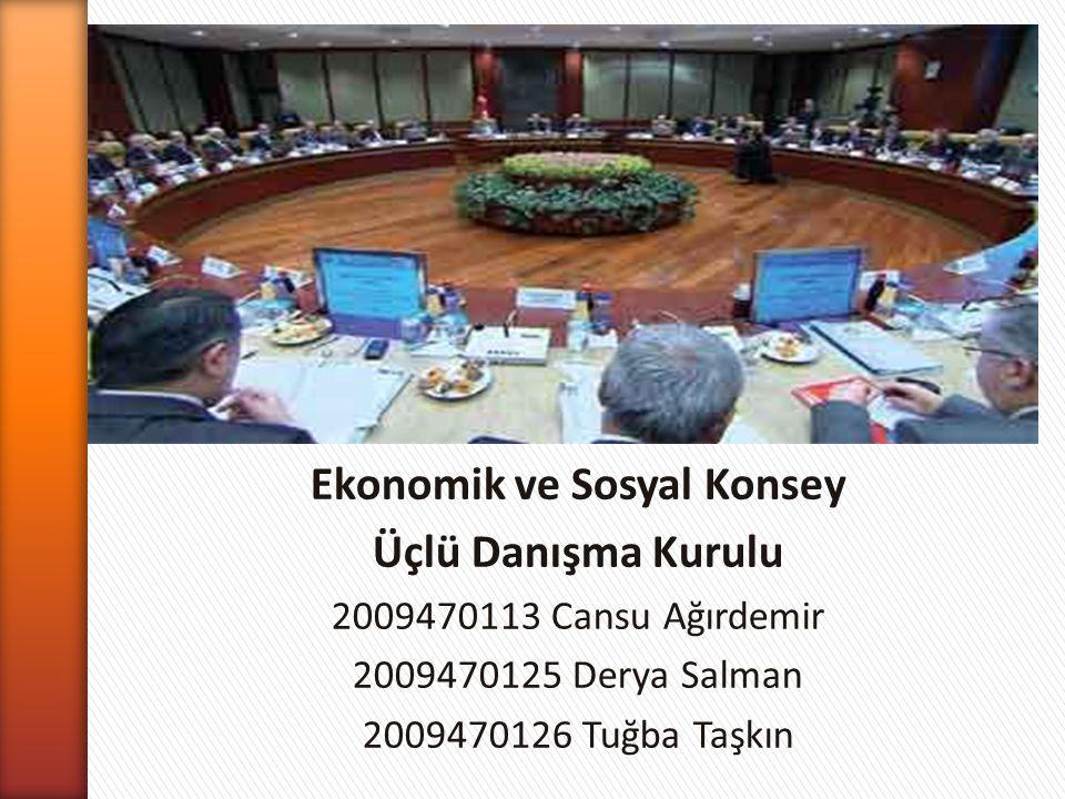 Ekonomik ve Sosyal Konsey
