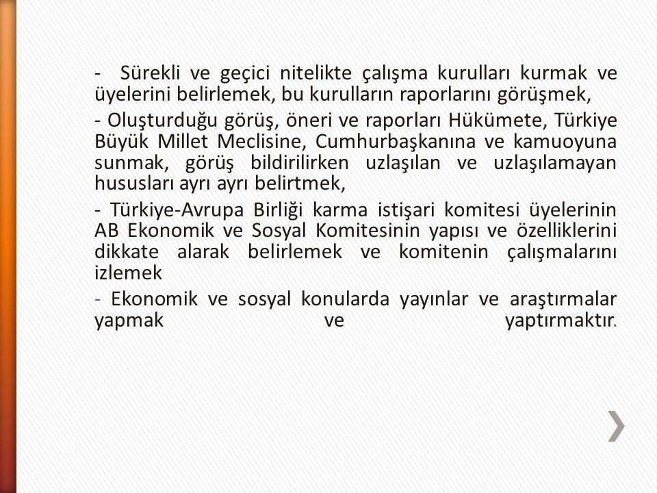- Sürekli ve geçici nitelikte çalışma kurulları kurmak ve üyelerini belirlemek, bu kurulların raporlarını görüşmek, - Oluşturduğu görüş, öneri ve raporları Hükümete, Türkiye Büyük Millet Meclisine, Cumhurbaşkanına ve kamuoyuna sunmak, görüş bildirilirken uzlaşılan ve uzlaşılamayan hususları ayrı ayrı belirtmek, - Türkiye-Avrupa Birliği karma istişari komitesi üyelerinin AB Ekonomik ve Sosyal Komitesinin yapısı ve özelliklerini dikkate alarak belirlemek ve komitenin çalışmalarını izlemek - Ekonomik ve sosyal konularda yayınlar ve araştırmalar yapmak ve yaptırmaktır.
