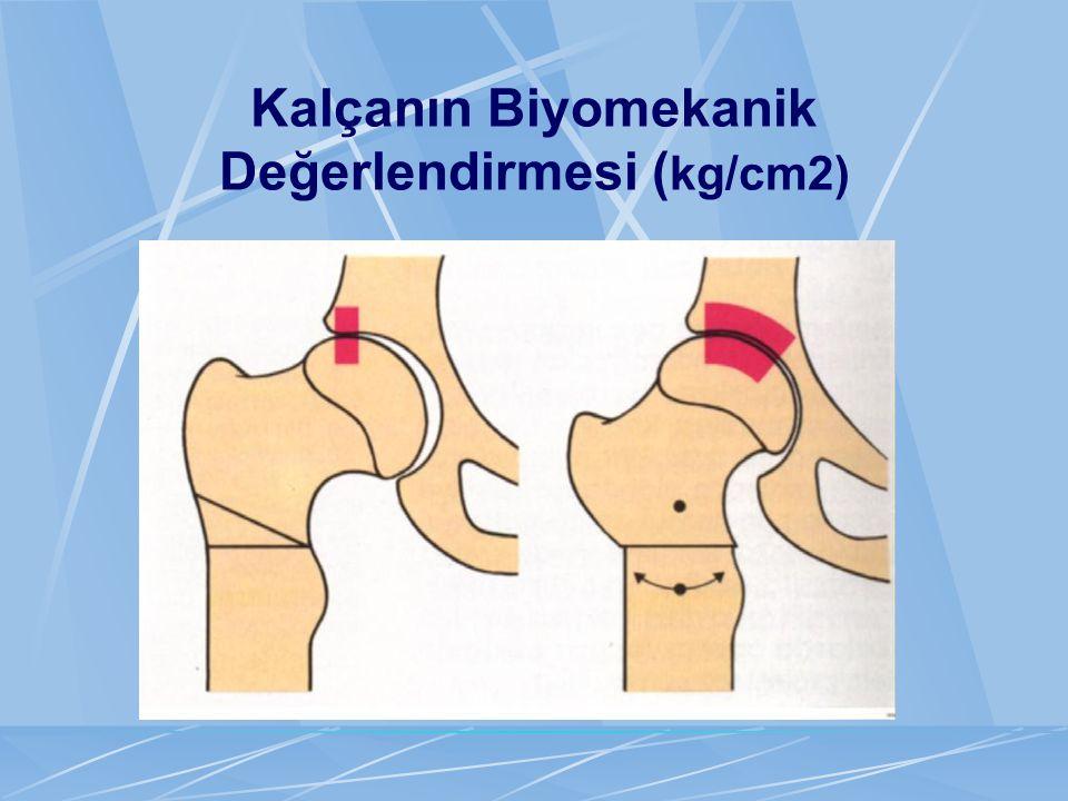 Kalçanın Biyomekanik Değerlendirmesi (kg/cm2)