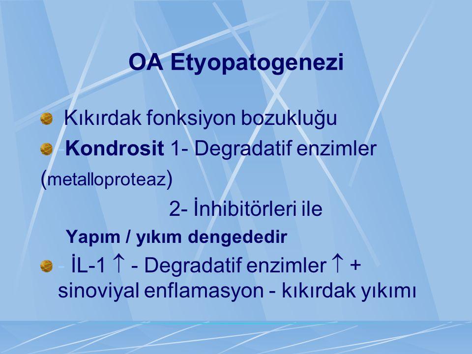 OA Etyopatogenezi Kıkırdak fonksiyon bozukluğu