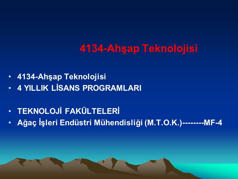 4134-Ahşap Teknolojisi 4 YILLIK LİSANS PROGRAMLARI.