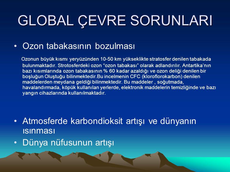 GLOBAL ÇEVRE SORUNLARI