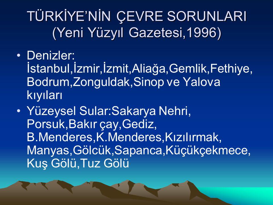 TÜRKİYE'NİN ÇEVRE SORUNLARI (Yeni Yüzyıl Gazetesi,1996)