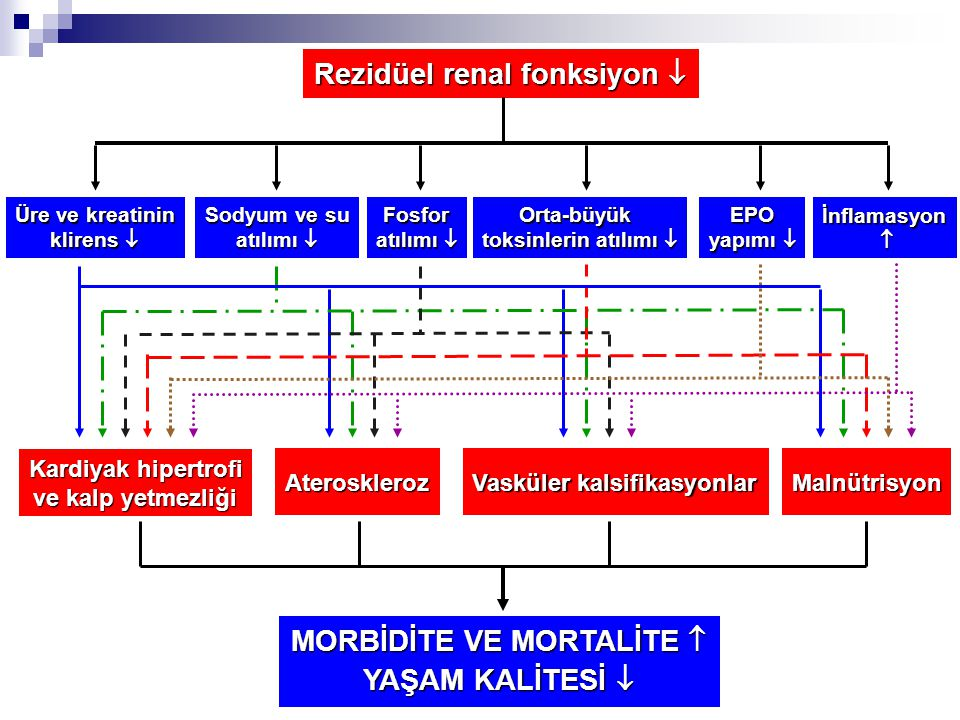 MORBİDİTE VE MORTALİTE 