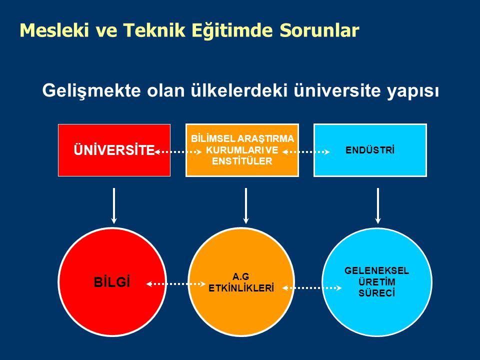 Gelişmekte olan ülkelerdeki üniversite yapısı