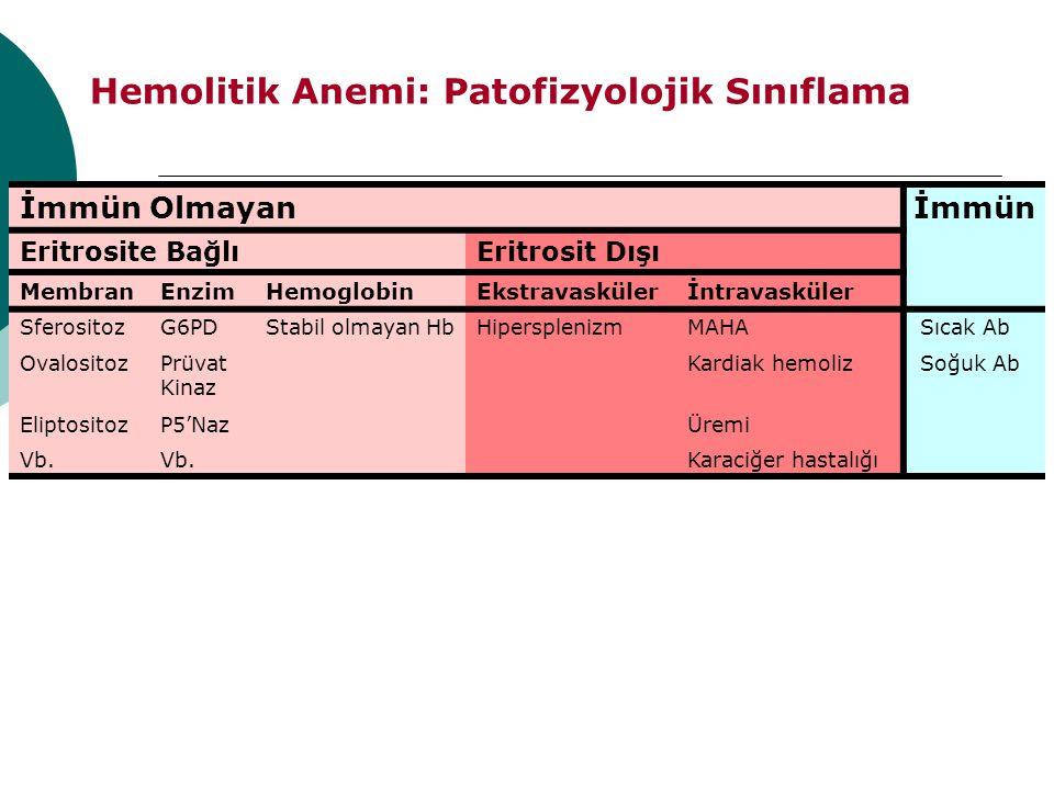 Hemolitik Anemi: Patofizyolojik Sınıflama