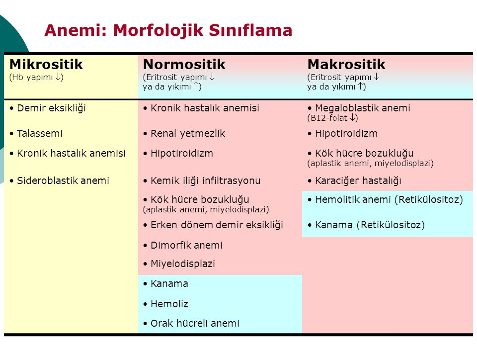 Anemi: Morfolojik Sınıflama