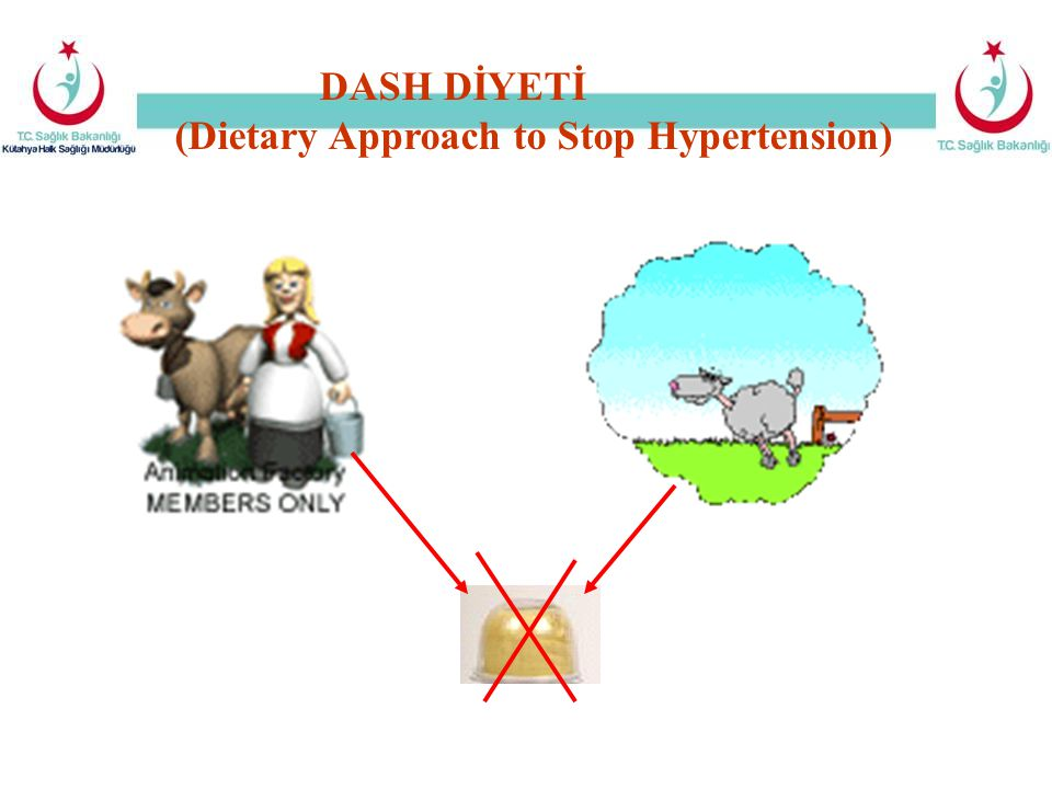 (Dietary Approach to Stop Hypertension)