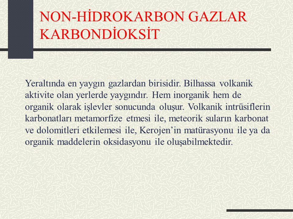 NON-HİDROKARBON GAZLAR KARBONDİOKSİT