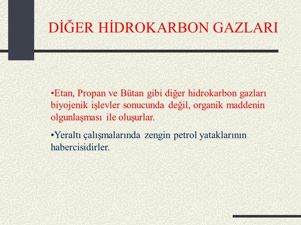 DİĞER HİDROKARBON GAZLARI