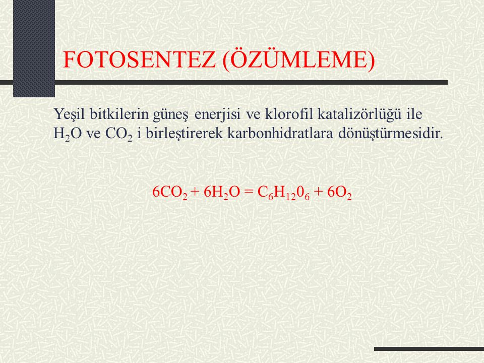 FOTOSENTEZ (ÖZÜMLEME)