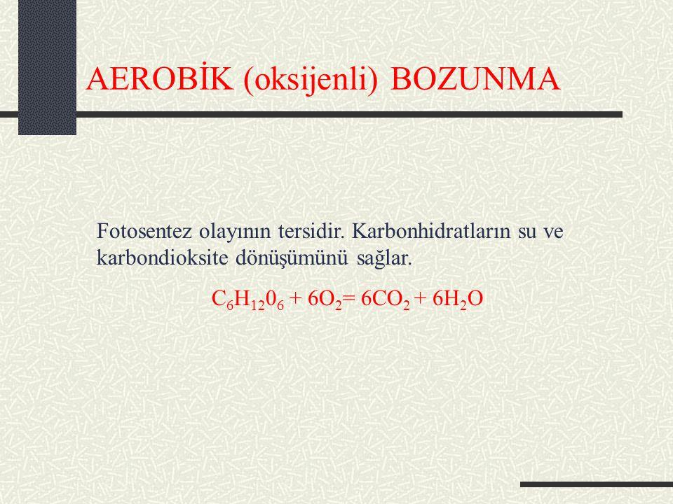 AEROBİK (oksijenli) BOZUNMA