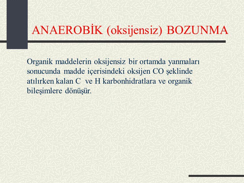 ANAEROBİK (oksijensiz) BOZUNMA
