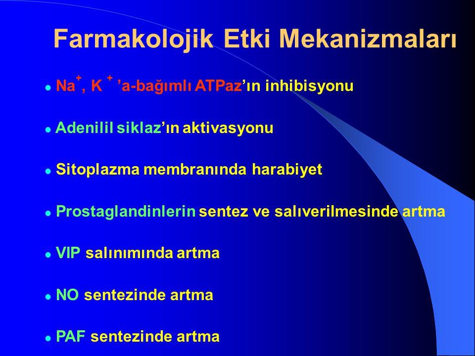 Farmakolojik Etki Mekanizmaları