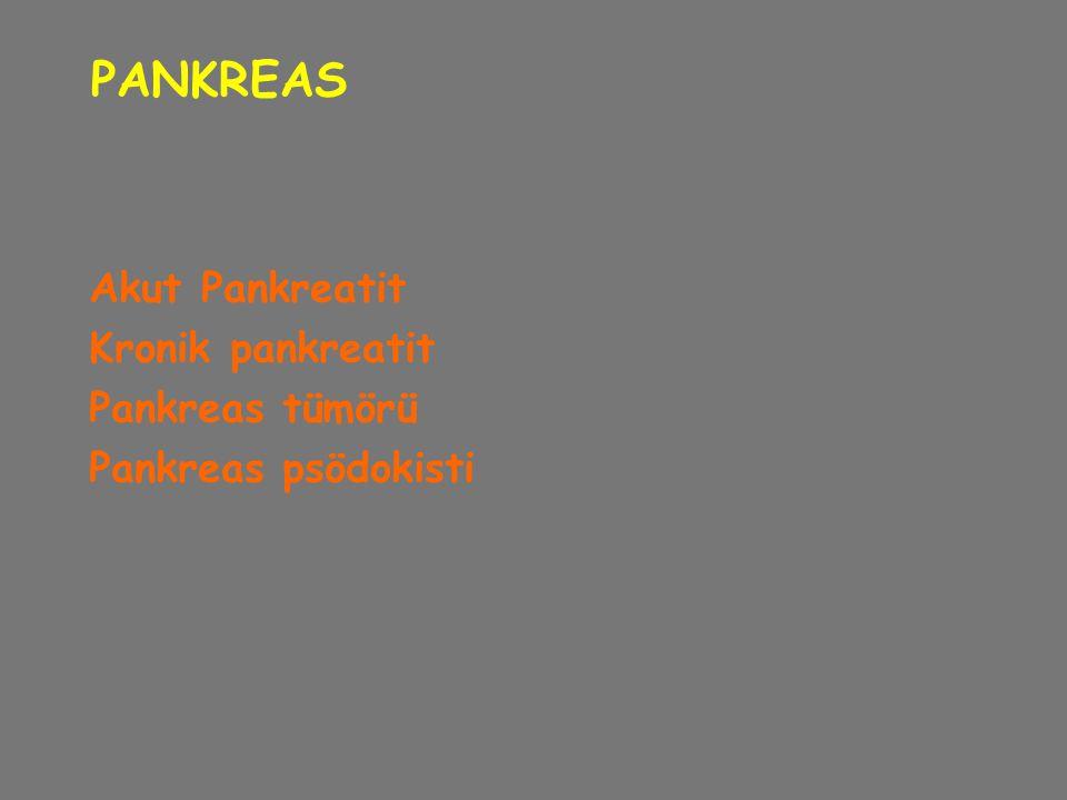 PANKREAS Akut Pankreatit Kronik pankreatit Pankreas tümörü
