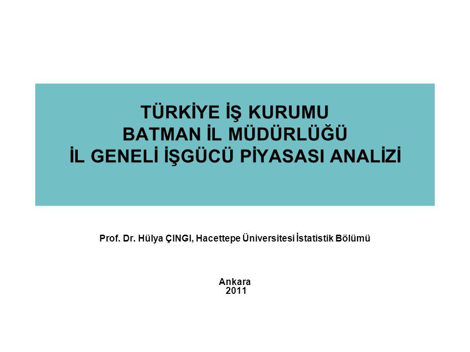Prof. Dr. Hülya ÇINGI, Hacettepe Üniversitesi İstatistik Bölümü
