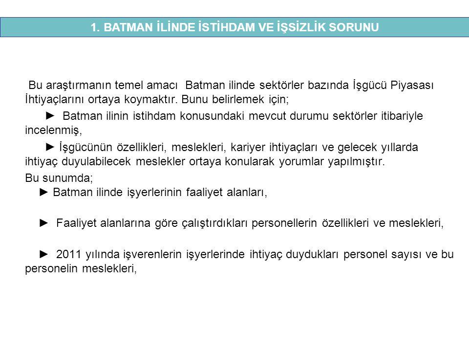 1. BATMAN İLİNDE İSTİHDAM VE İŞSİZLİK SORUNU