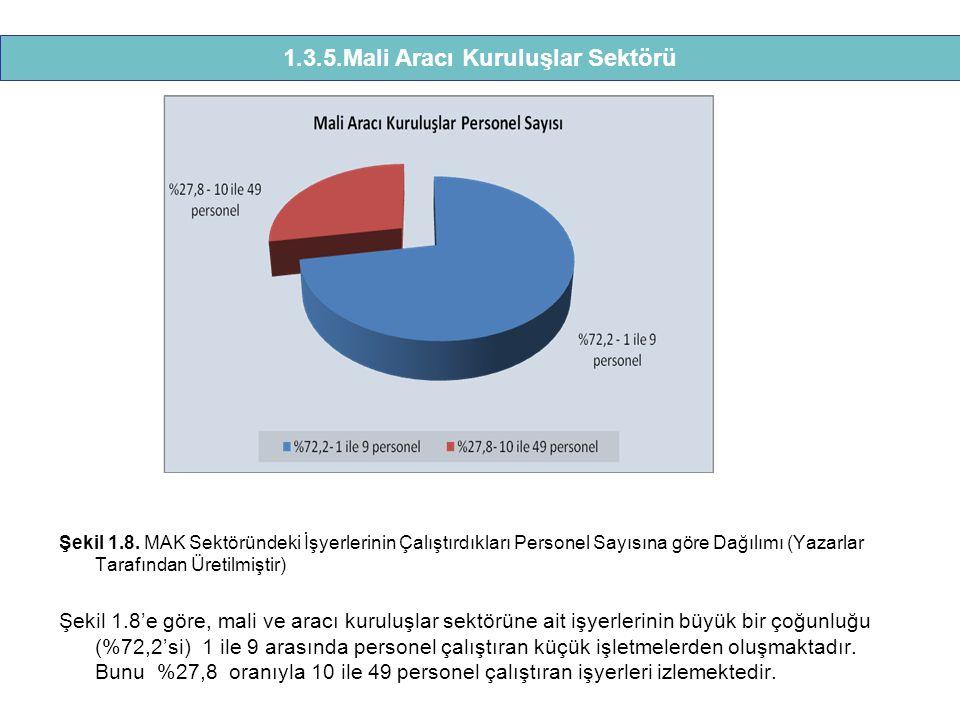 1.3.5.Mali Aracı Kuruluşlar Sektörü