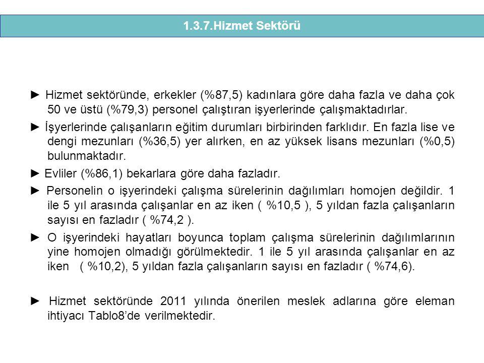 1.3.7.Hizmet Sektörü