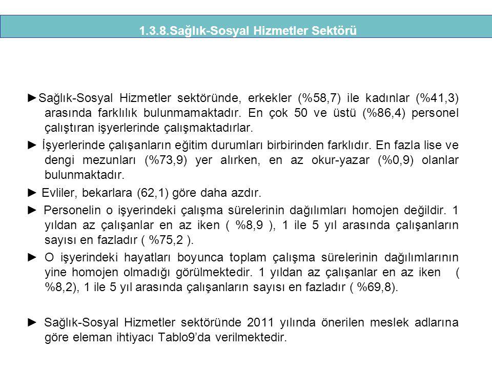 1.3.8.Sağlık-Sosyal Hizmetler Sektörü