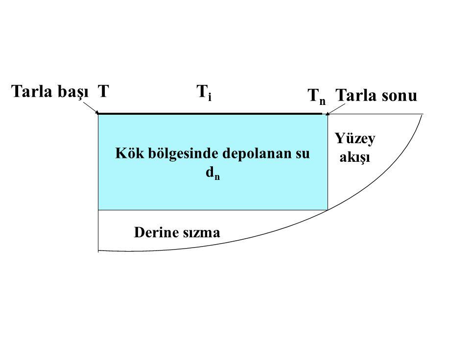 Kök bölgesinde depolanan su