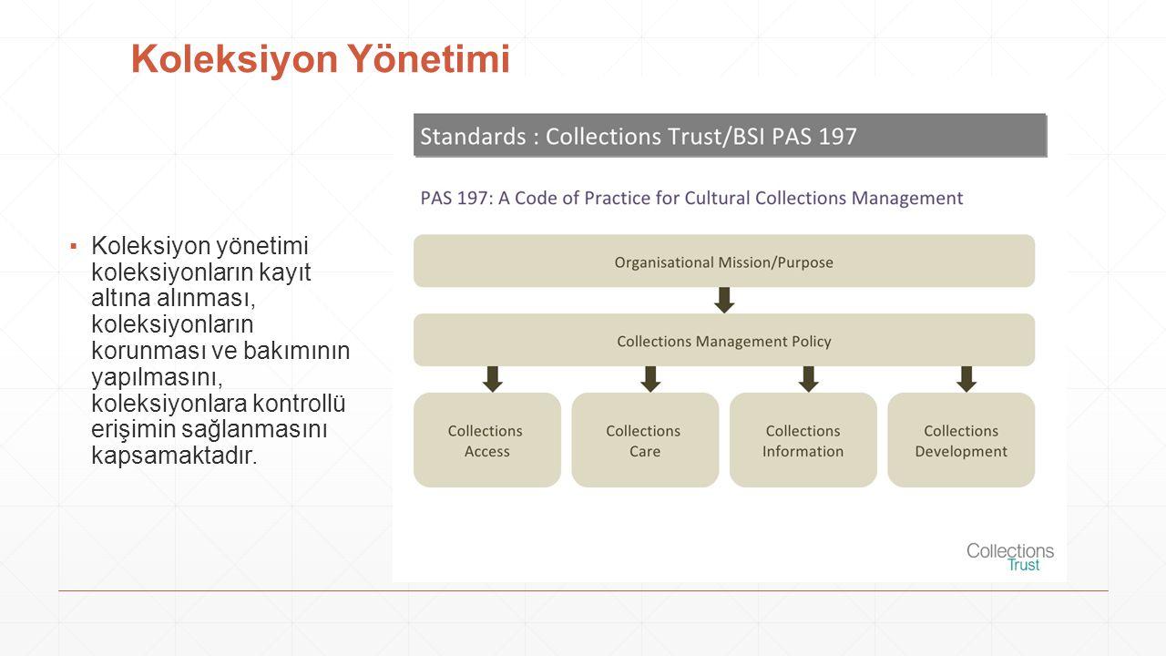 Koleksiyon Yönetimi
