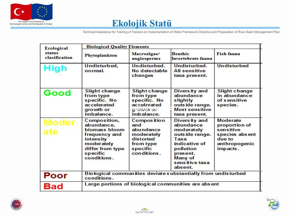 Ekolojik Statü Ecological status