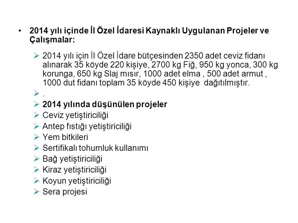 2014 yılı içinde İl Özel İdaresi Kaynaklı Uygulanan Projeler ve Çalışmalar: