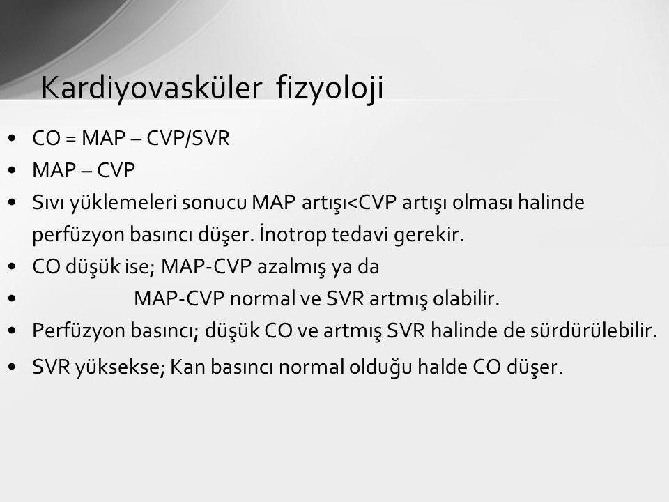 Kardiyovasküler fizyoloji