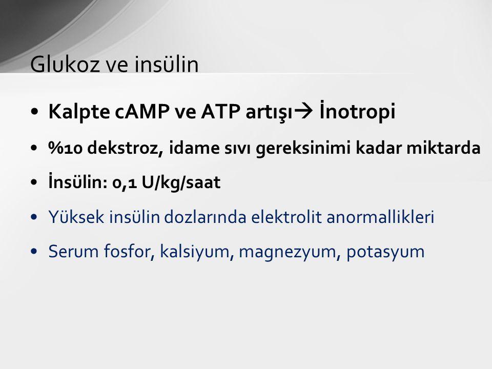Glukoz ve insülin Kalpte cAMP ve ATP artışı İnotropi