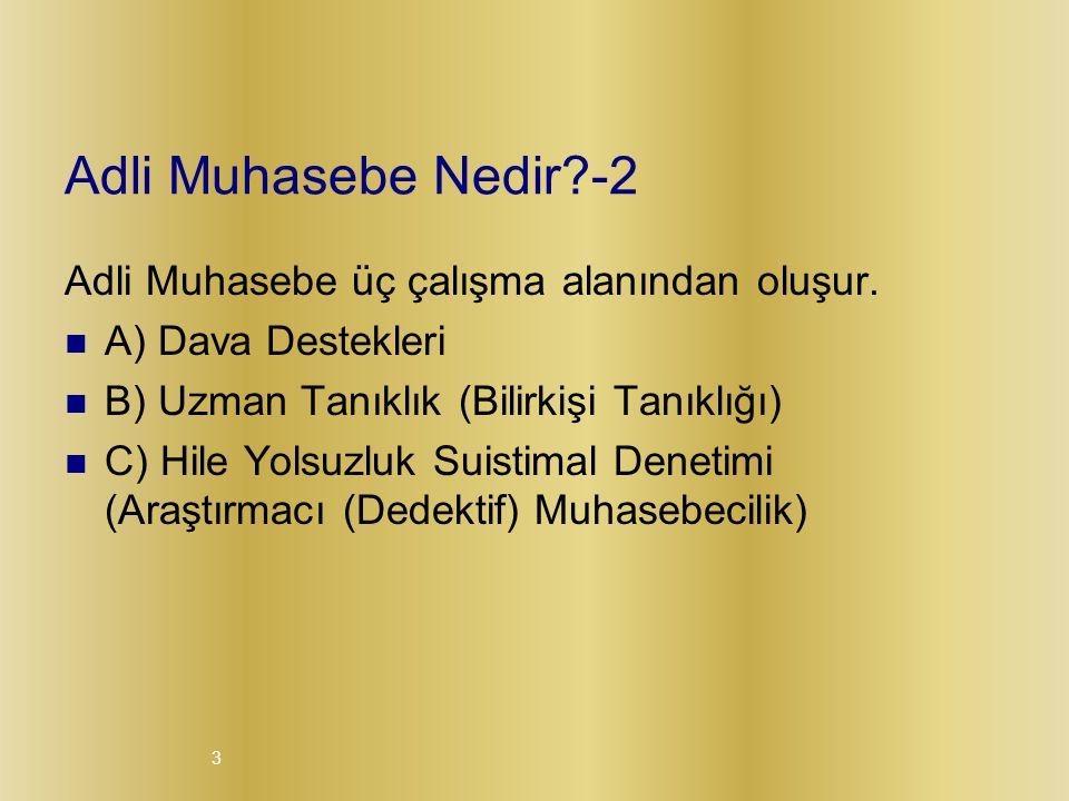 Adli Muhasebe Nedir -2 Adli Muhasebe üç çalışma alanından oluşur.